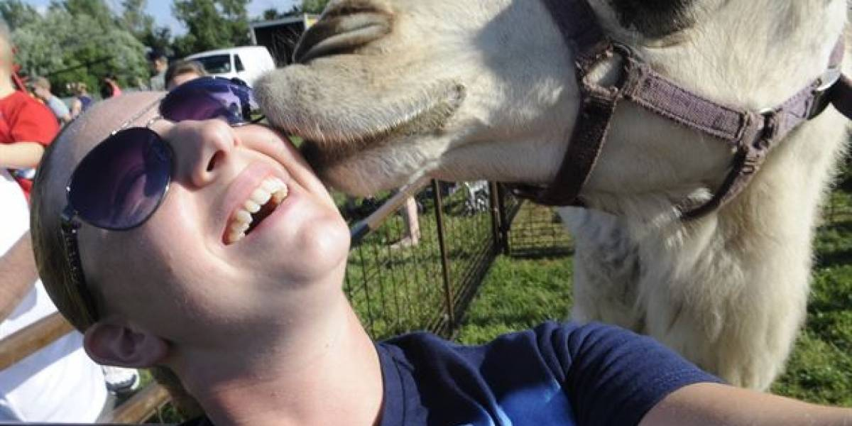 Selfies son una forma de crueldad contra los animales, ONG