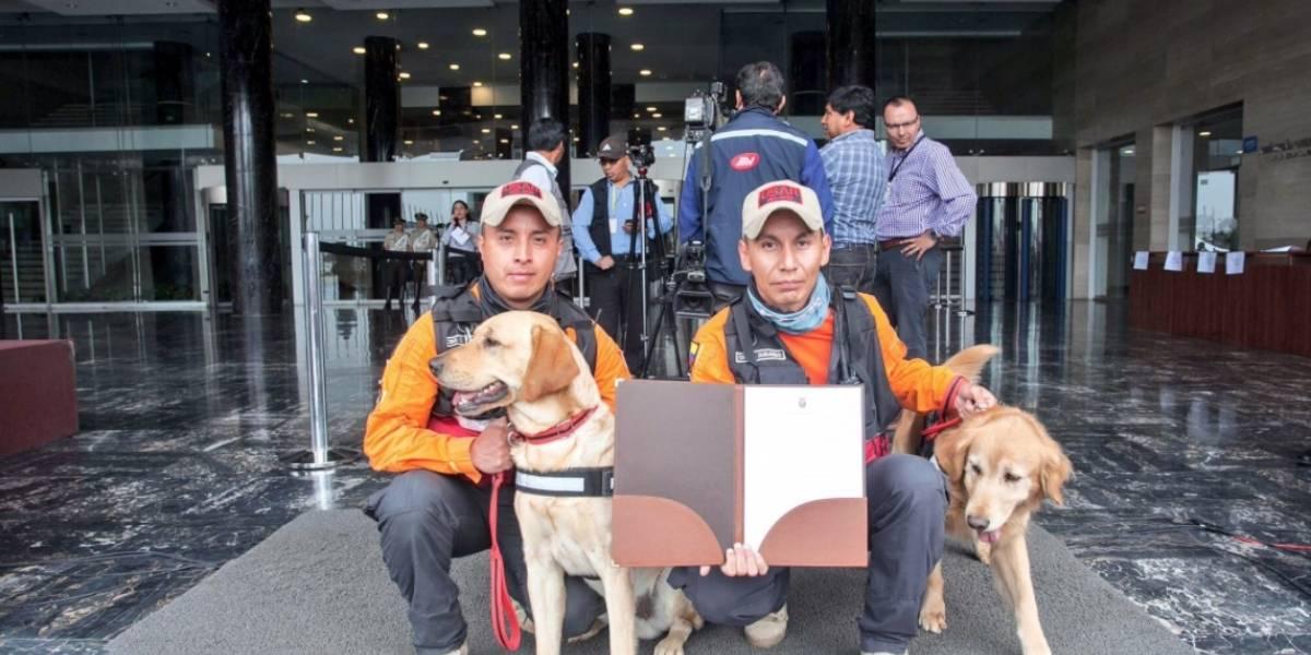 Asamblea Nacional entregó reconocimiento a unidad canina que colaboró en México