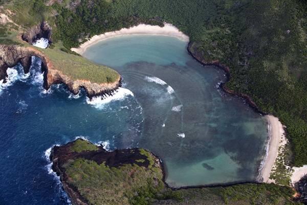 Tratan de salvar la virginidad de las Islas Revillagigedo