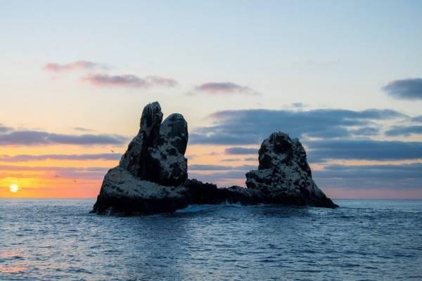 Islas Revillagigedo son parque natural pese a oposición de expertos