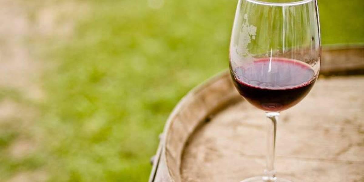 Exportación de vinos crece gracias a categoría premium