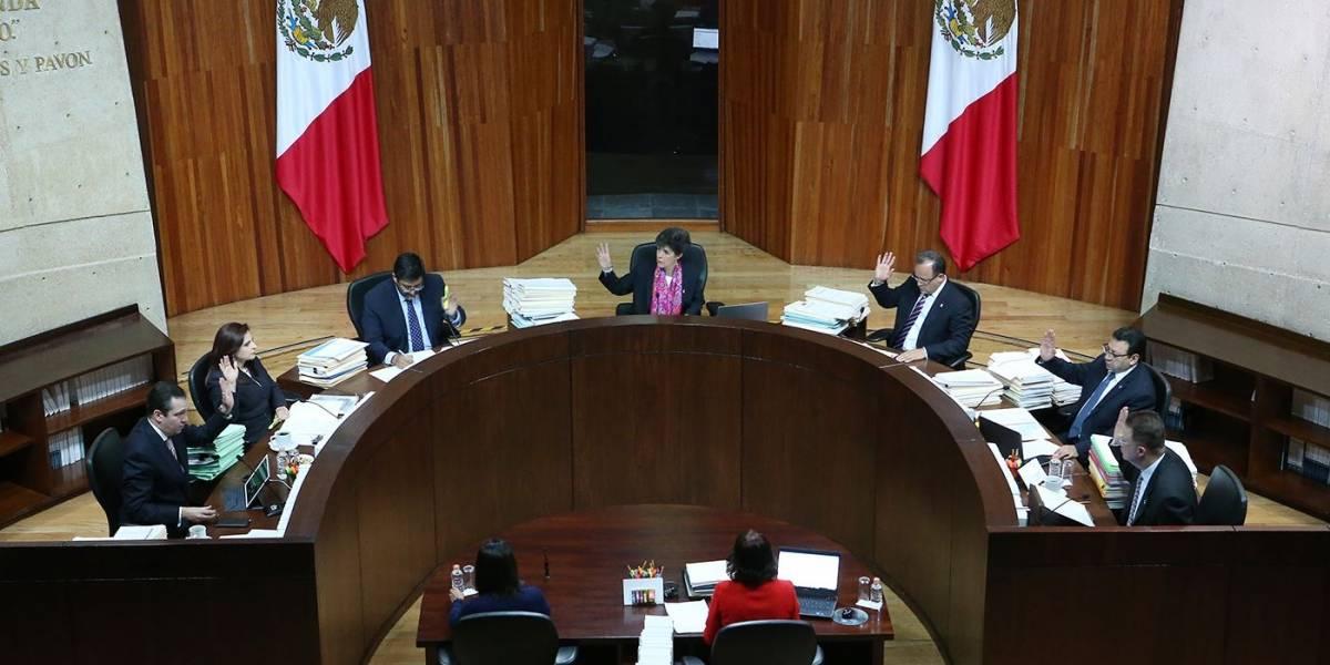Tribunal Electoral extiende plazo para registro de independientes