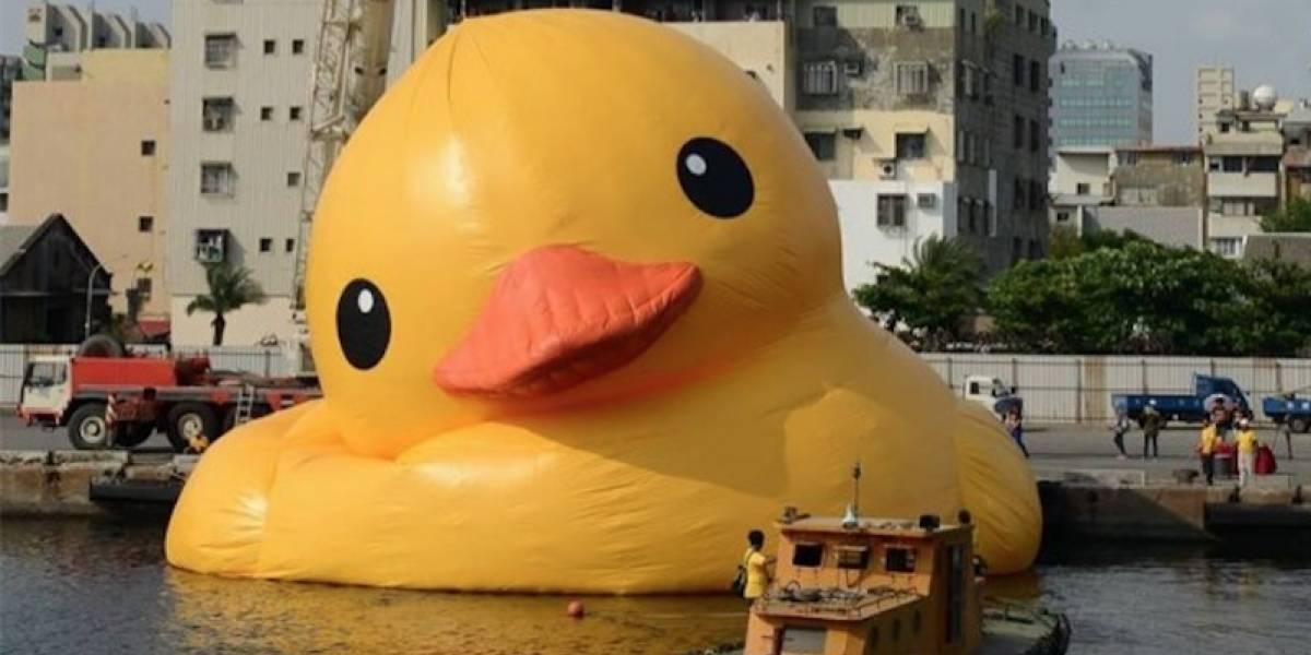 El Pato de Hule ha sido víctima del clima, terremotos e incluso de cuchilladas