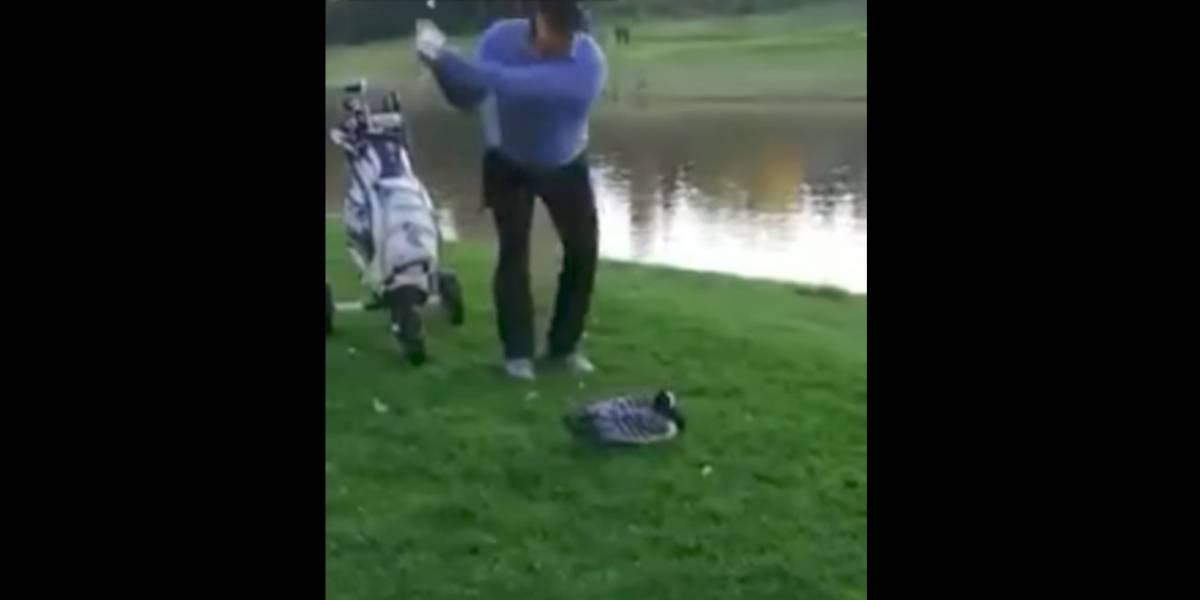 VIDEO: Golfista causa indignación por decapitar a un ganso