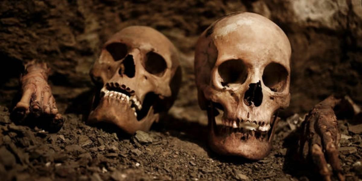 Alemania investiga misterioso origen de mil cráneos africanos en hospital de Berlín