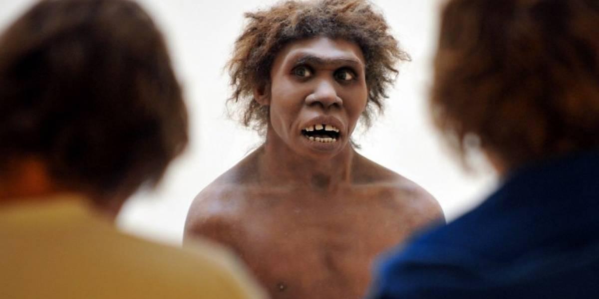 Somos más neandertales de lo que creíamos: nuevo estudio revela su importante influencia en el hombre moderno