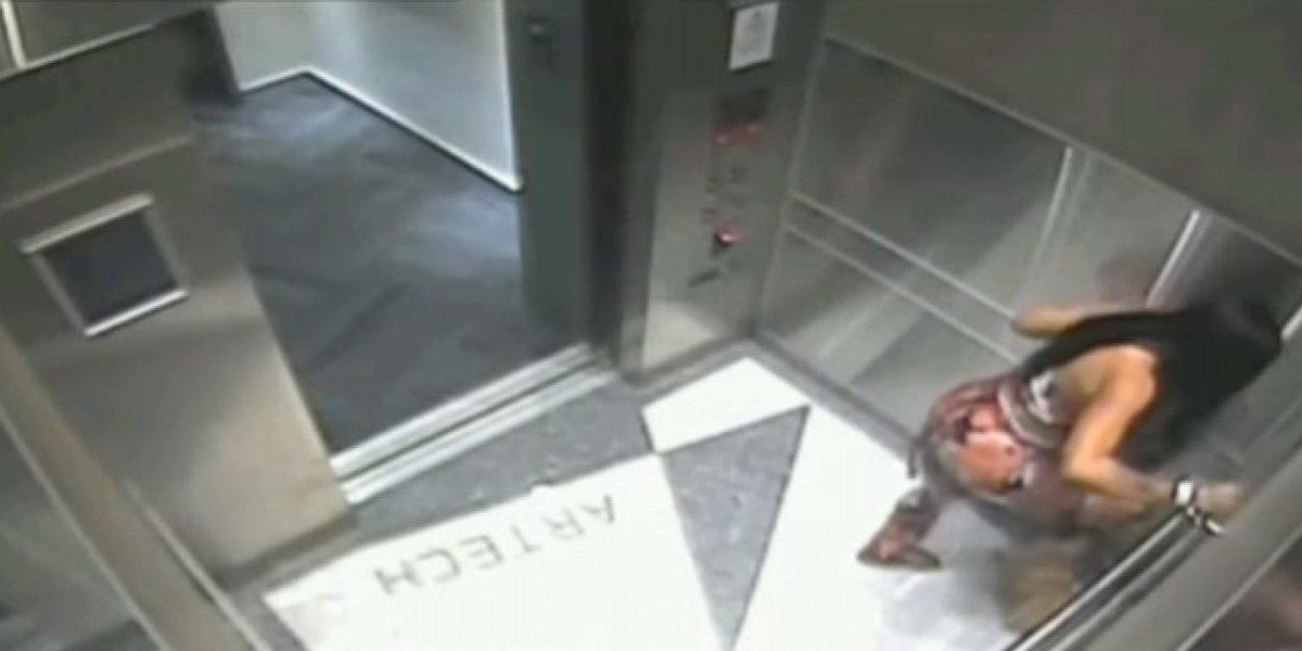 Arrestan a mujer tras ser grabada pateando violentamente a su cachorro en un ascensor