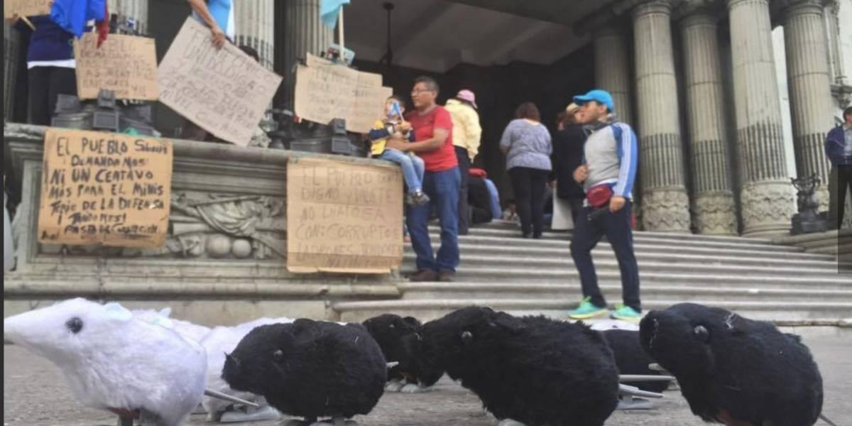 Con ratas, los ciudadanos manifiestan en contra de Álvaro Arzú