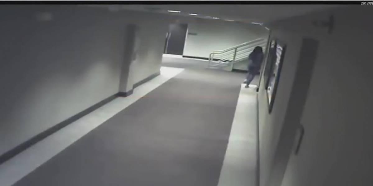 ¡No fue un asesinato! Mujer encontrada en un congelador murió por otras causas