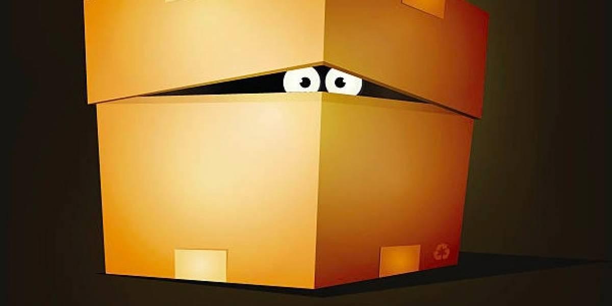 Web: Conoce el novedoso sistema de cajas para coleccionistas chilenos