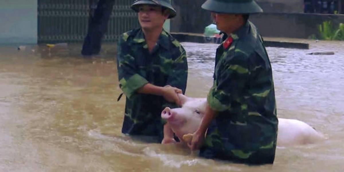 Inundaciones por depresión tropical matan a 15 en Vietnam