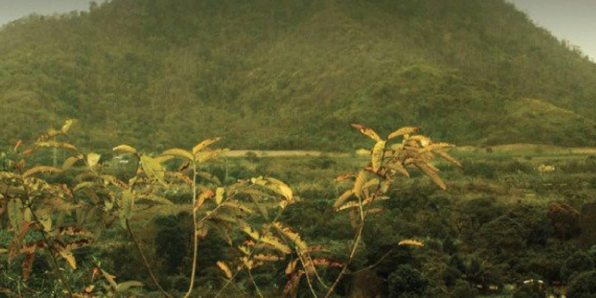 Proponen que zona del Chocó Andino sea declarada Reserva de la biosfera de la Unesco