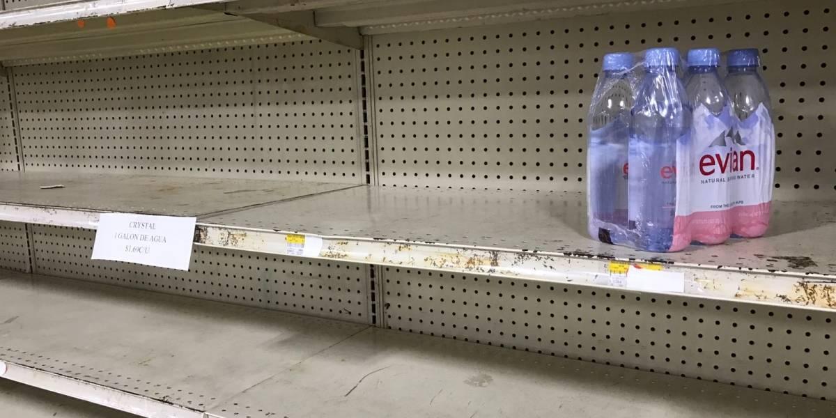 Sin fin la odisea para encontrar agua potable en Puerto Rico