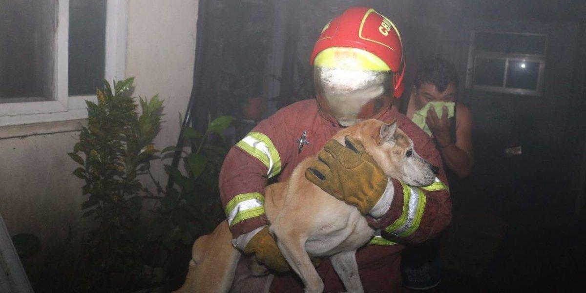 Rescatan a personas y mascotas del interior de vivienda incendiada en zona 14