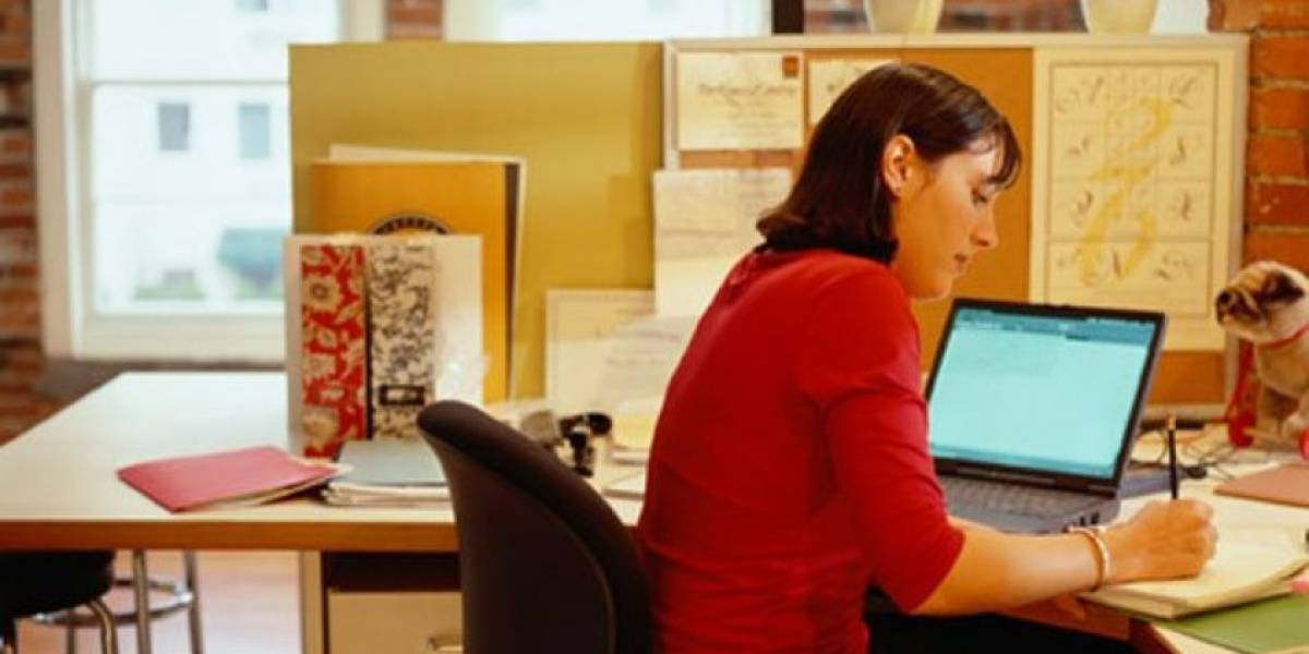 Servicio Civil lanza portal con 300 cupos para trabajar en el Estado