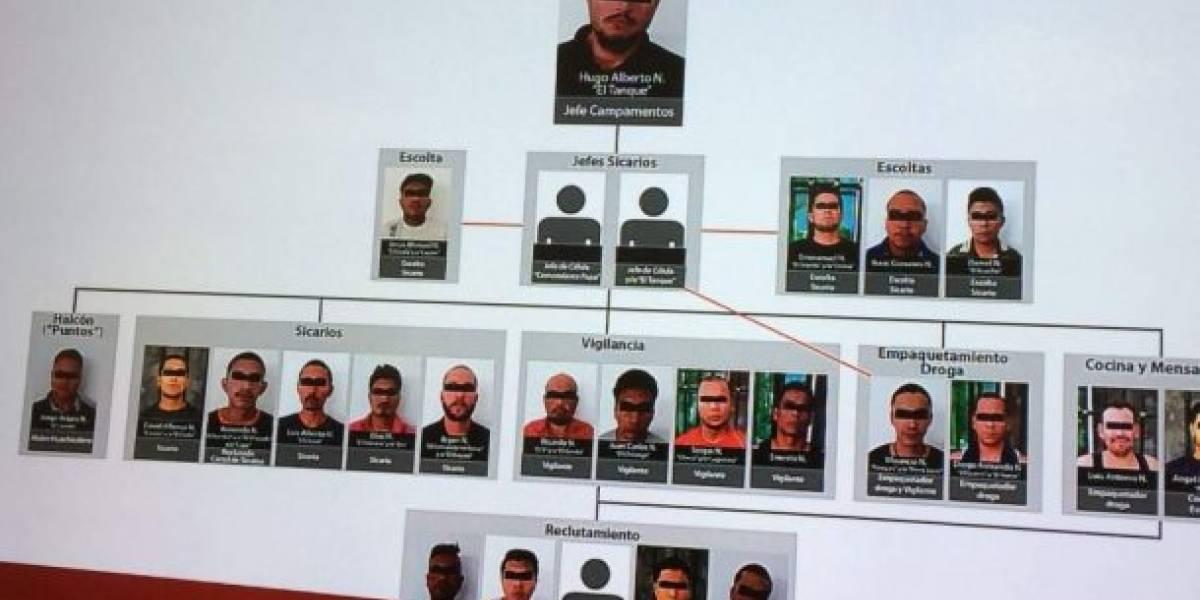Detienen célula de organización delictuosa que operaba en Puerto Vallarta