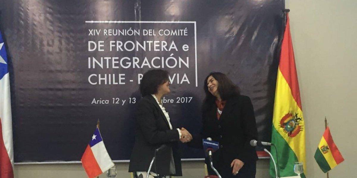 Combate sistemático al narcotráfico, contrabando y trata de personas acordaron Chile y Bolivia en cónclave fronterizo