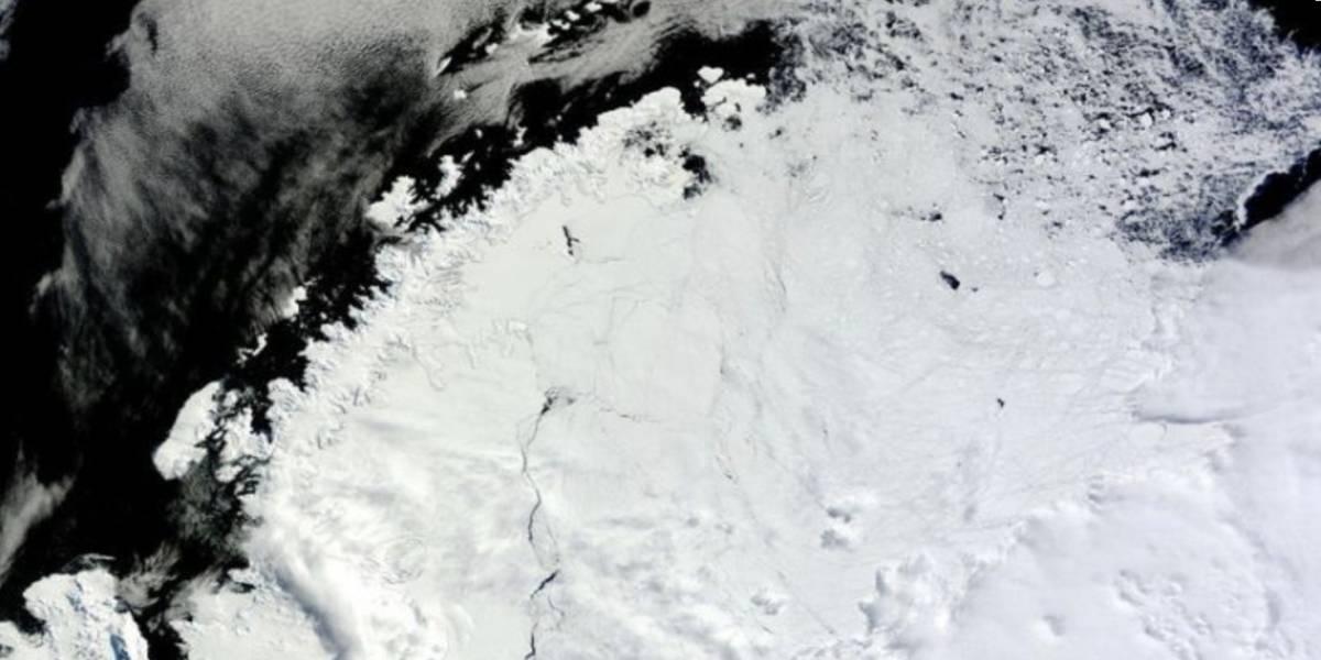 Hallazgo en la Antártida preocupa a investigadores