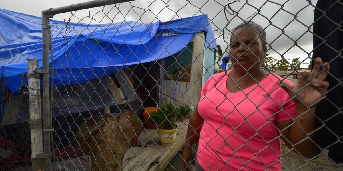 ¿Puerto Rico se está levantando?
