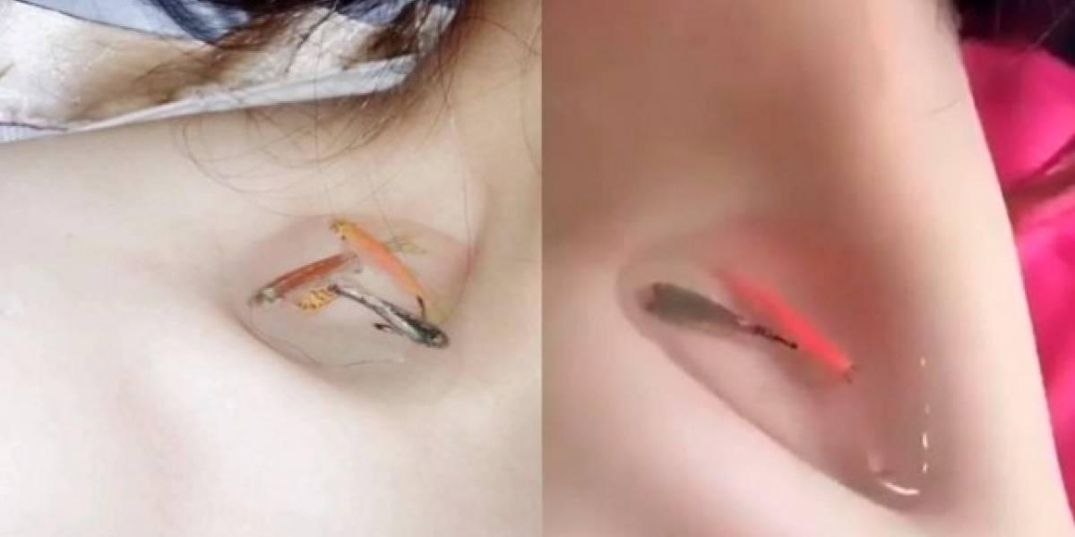 El nuevo reto viral: ponerse peces en el hueco de la clavícula para demostrar delgadez