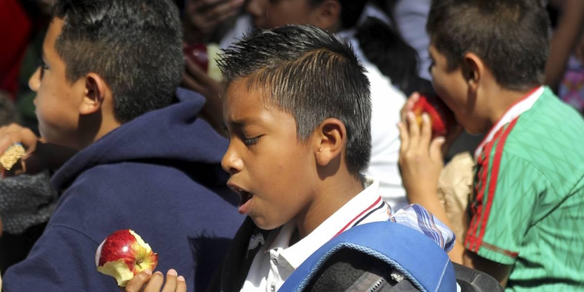 Casi 400 mil michoacanos han logrado superar la pobreza alimentaria: Sedesol