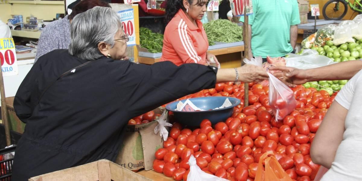Michoacán ocupa el segundo lugar nacional en producción de jitomate