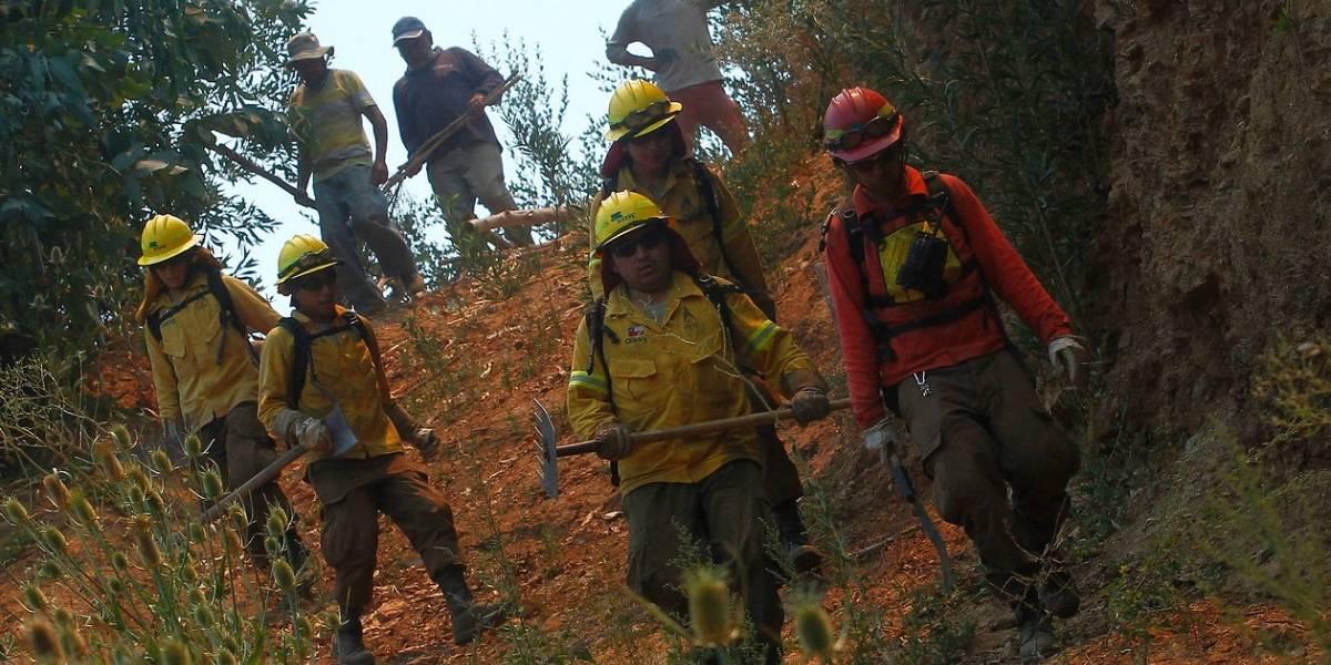 Murió brigadistas de la Conaf que había sufrido graves quemaduras combatiendo los mega incendios forestales de enero