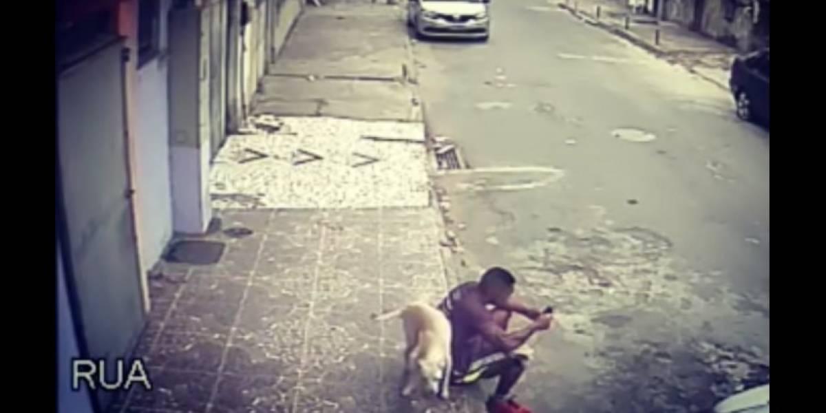 Para recuperar la esperanza: se gana el odio tras tratar de golpear a perro callejero que lo orinó pero todo termina de la mejor forma