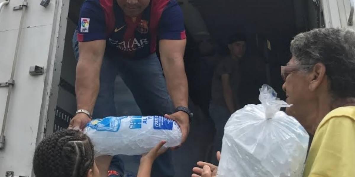 Reparten miles de bolsas de hielo en Arecibo