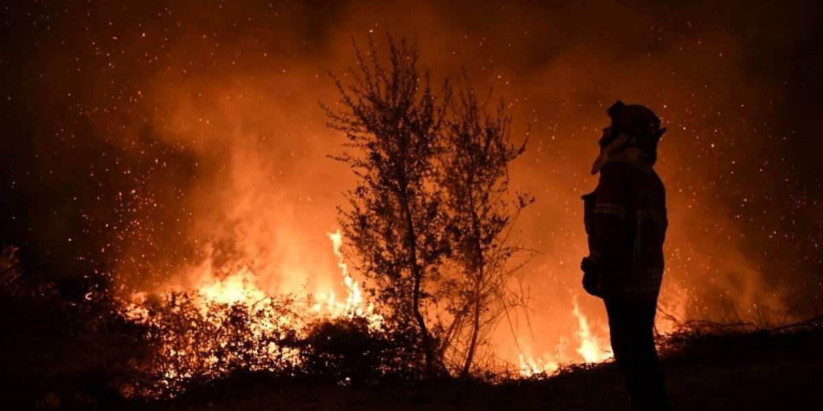 La primera víctima política de los incendios mortales en Portugal: ministra del Interior renuncia