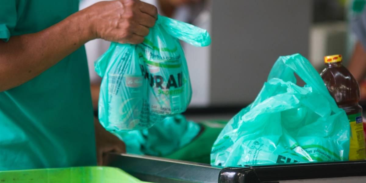 Alunos criam sacolas plásticas comestíveis
