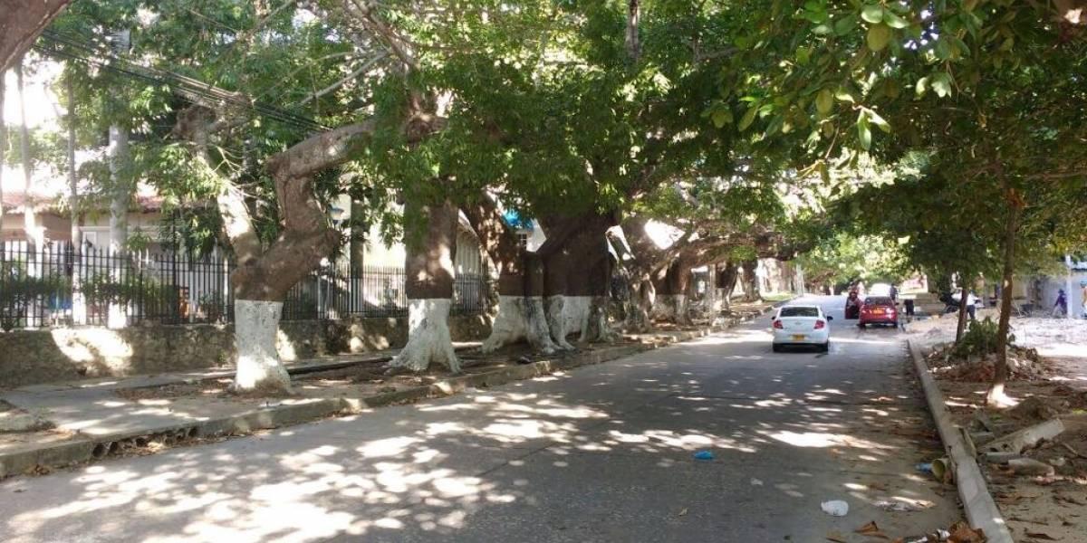 Avanza recuperación de 29 bongas en sector comercial de Barranquilla