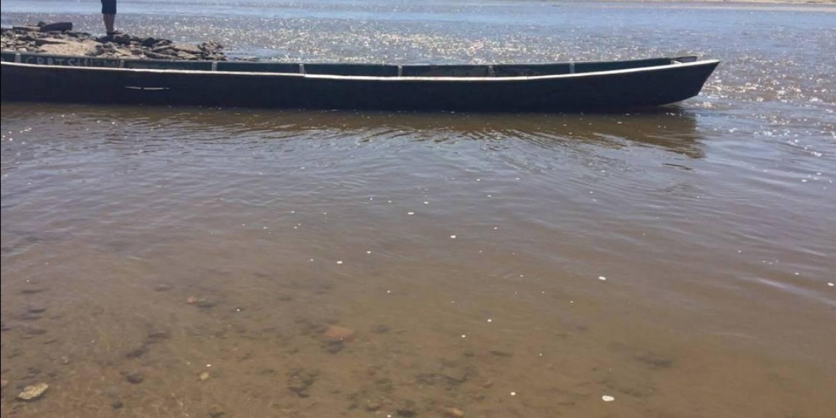 Apúntese este fin de semana al Festival por la grandeza del río Magdalena