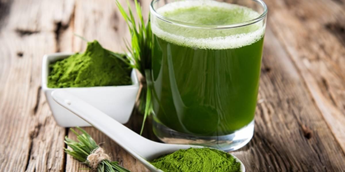 7 productos naturistas hechos en Chile que benefician la salud