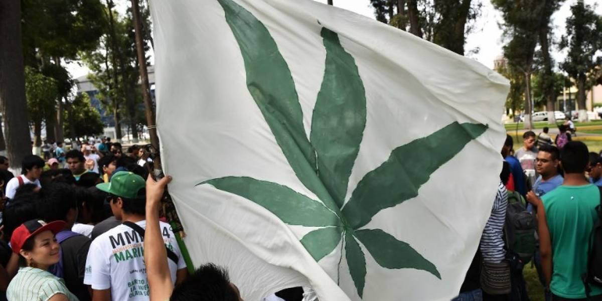 Perú escuchó la demanda ciudadana y aprobó el uso medicinal de la marihuana