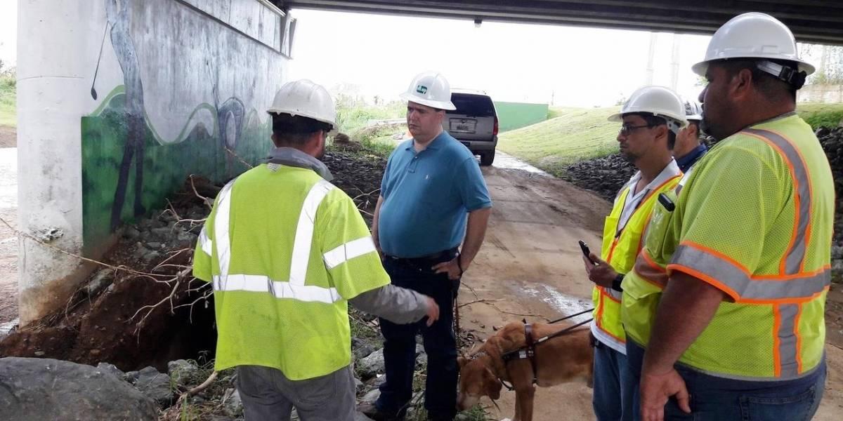 DTOP reabre puente de la carretera PR-177 en Bayamón