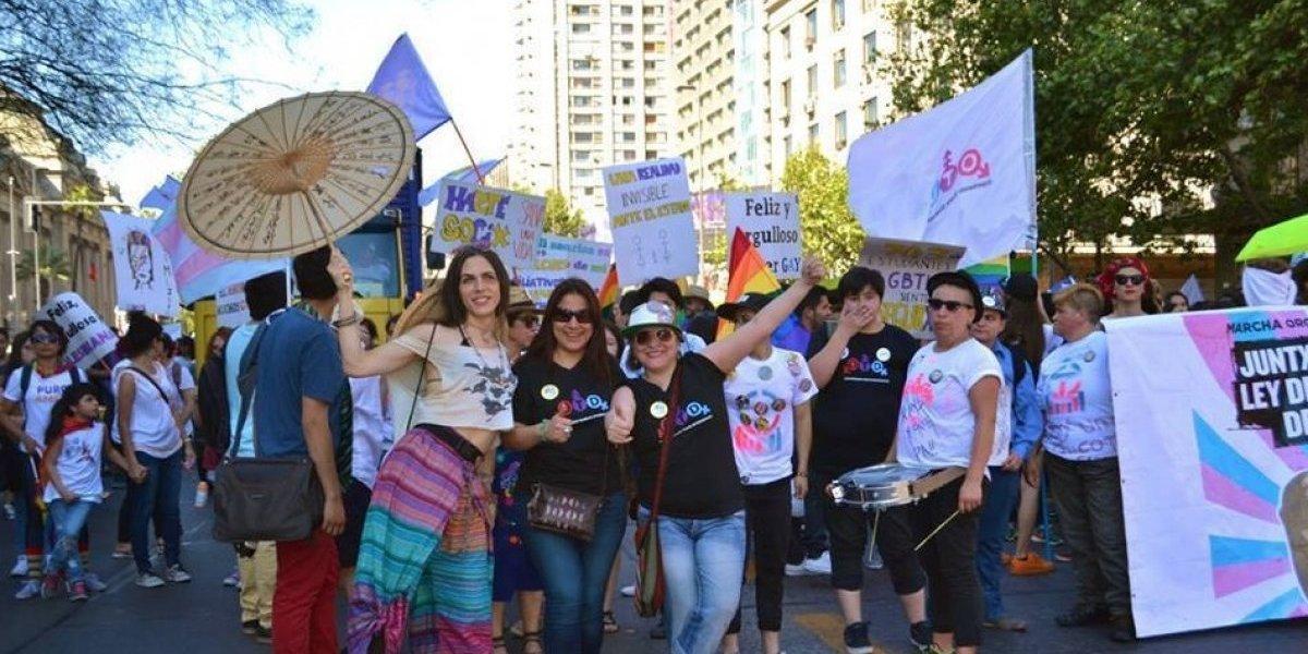 Organización trans realizará festival artístico en Santiago: hay actividades para niños y adultos