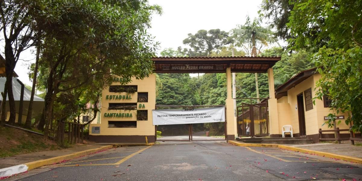 Febre amarela mata todas as famílias de macacos bugios do Horto Florestal de SP