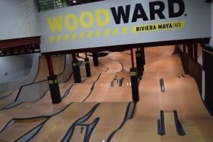 Wood Ward
