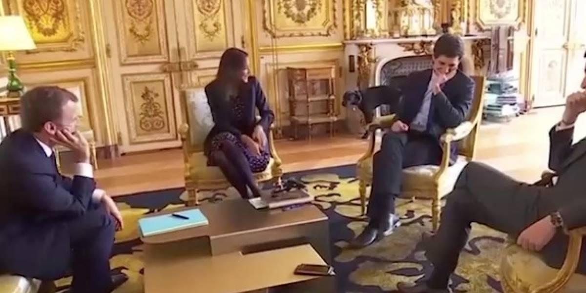 El perro de Macron no pudo más, olvidó el protocolo y se orinó en plena reunión ministerial