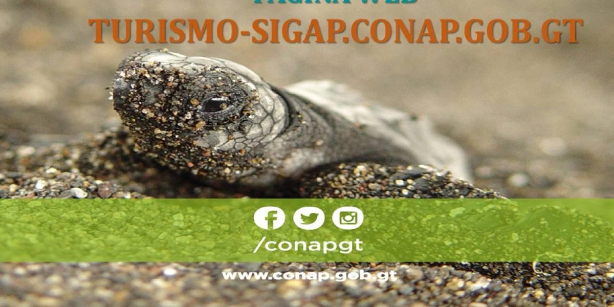 Conap lanza sitio web para promover áreas protegidas