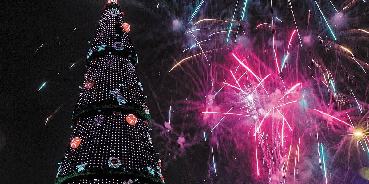 Árvore de Natal do Ibirapuera muda de lugar e será montada dentro do parque