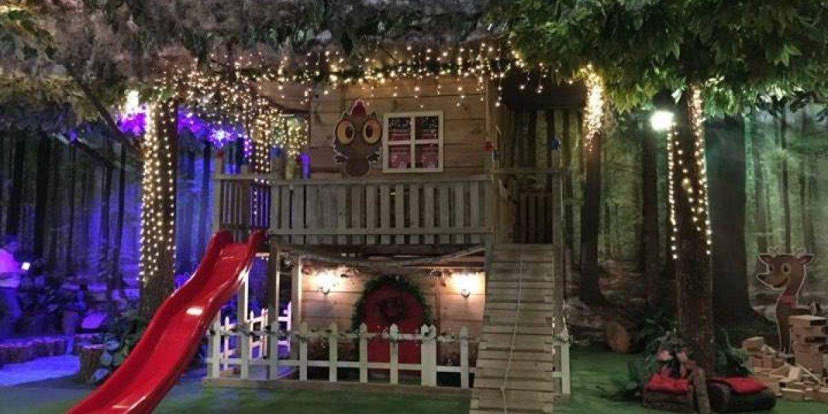 La Navidad encantó este bosque mágico con las mejores actividades para los niños