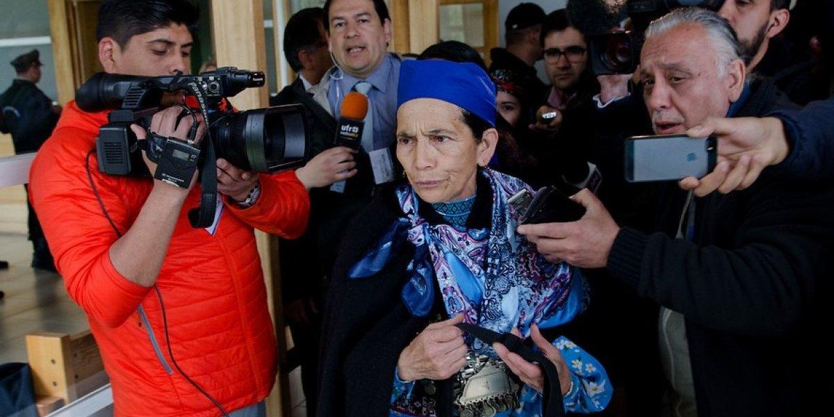 """Diputado Tarud y viaje de machi Linconao a Bolivia: """"Yo creo que si ella pide asilo, Evo se lo va a dar"""""""