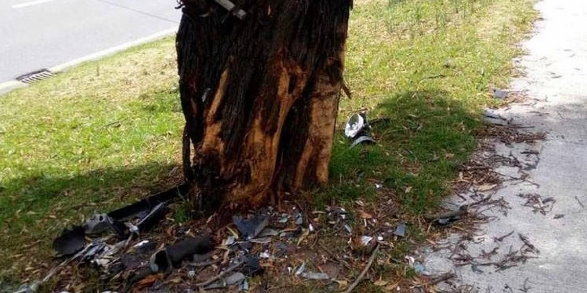 ¿Cuánto debe pagar si se accidenta contra un árbol en Quito?