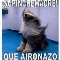 memesviento-2acde701e8eab2119fb8f15adcc0d381.jpg