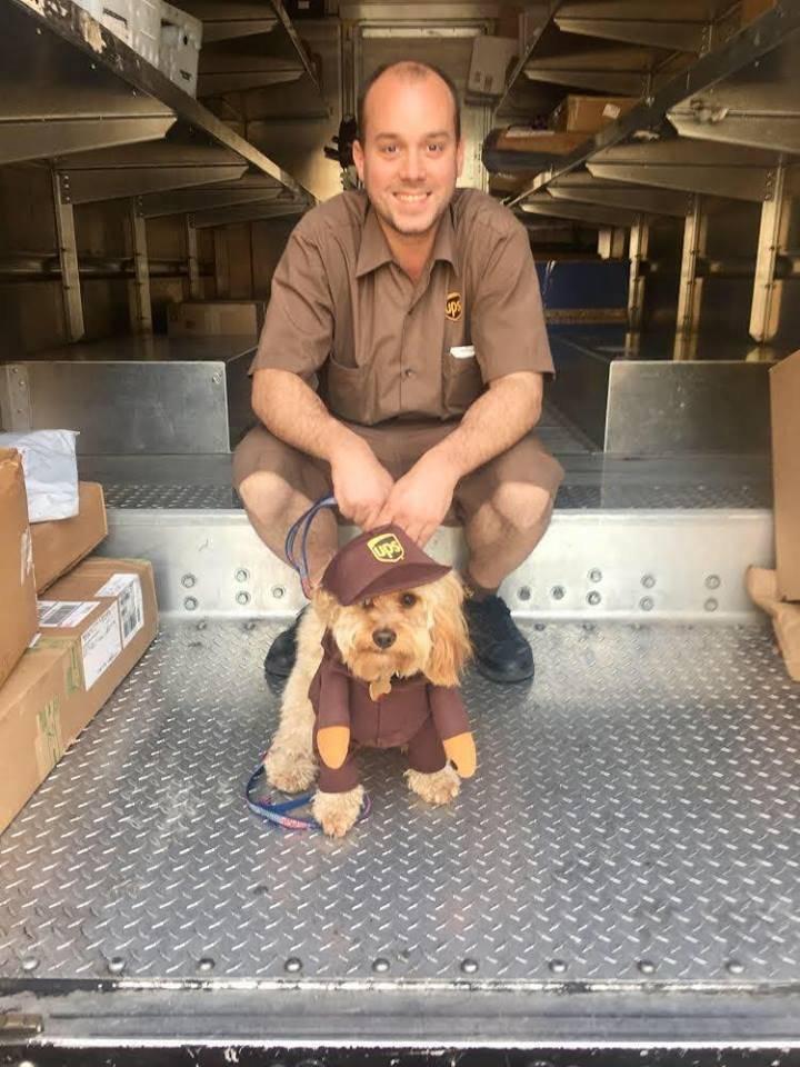 Motorista da UPS acompanhado por seu cachorro em Nova York Reprodução/Facebook/UPS DOGS