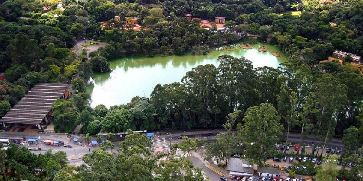 Zoológico e Jardim Botânico de São Paulo podem ser concedidos à iniciativa privada