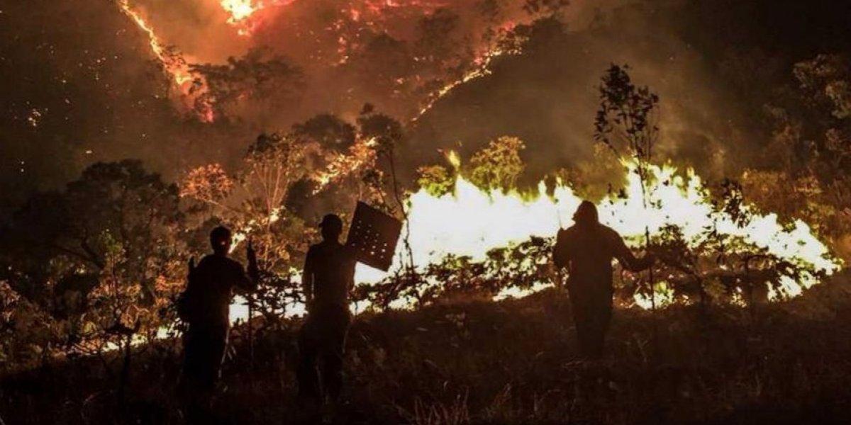 Incendio en reserva forestal de Brasil arrasa con 64 mil hectáreas