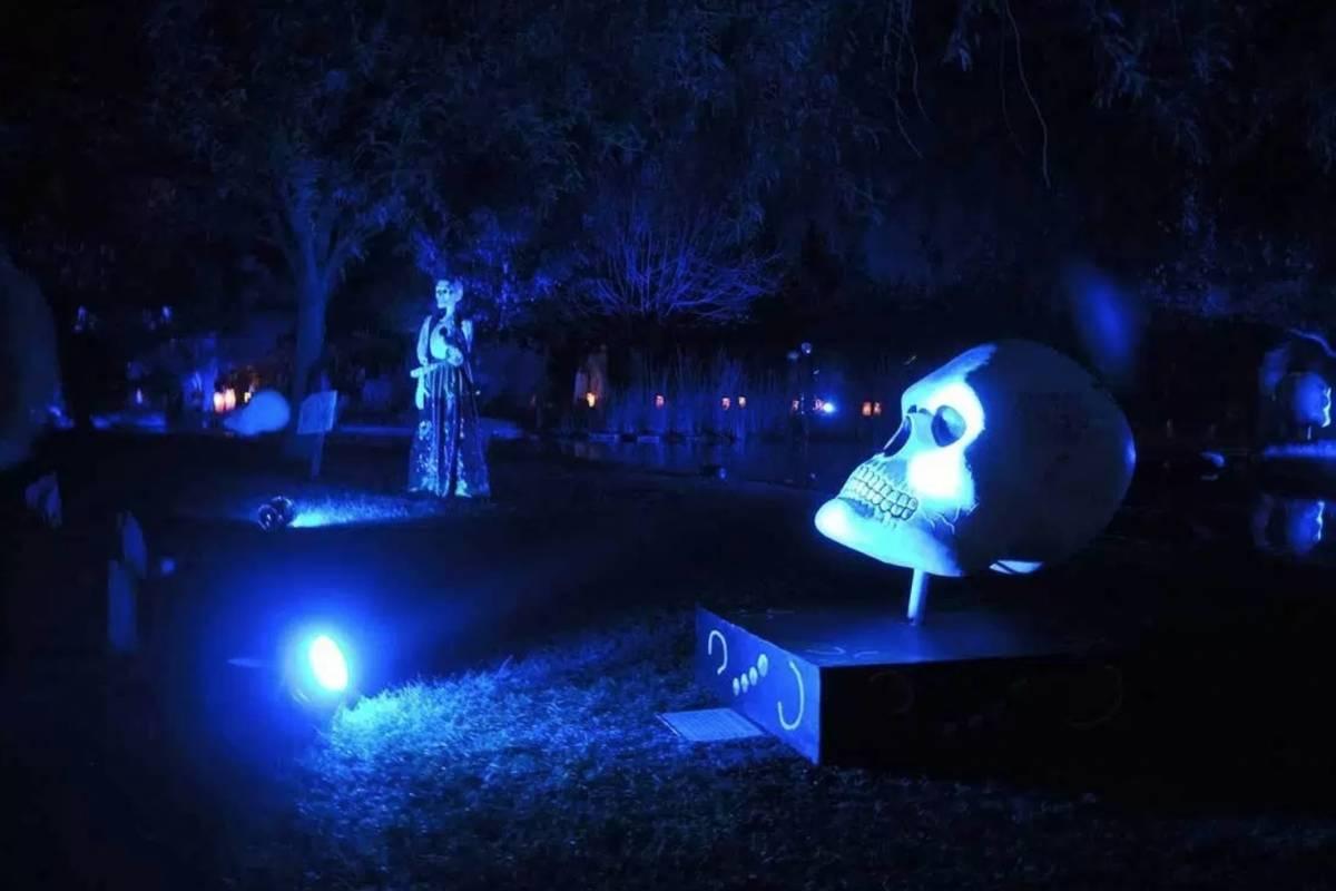 Festival de Noche de Muertos 2017